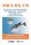 Do Not Eat Poisonous Puffer Fish
