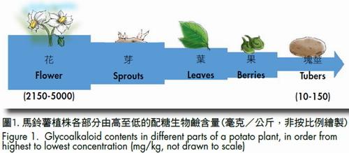 Toxic Glycoalkaloids in Potatoes